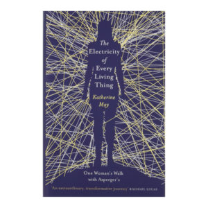 Katherine May Electricity front cover